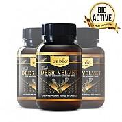 [유비바이오] 바이오액티브 녹용(발효녹용) 500mg 60캡슐 3개